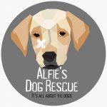 Alfie's Dog Rescue